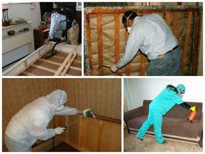 Обработка квартиры пошагово